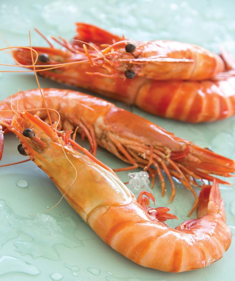 gambas, exotique, crustacés, mareyeur, traiteur, poissonnerie, auvergne maree